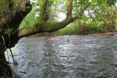 12. Perry Bridge to Watersmeet