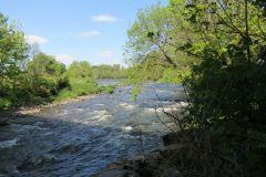 River Exe - Watersmeet to Tiverton