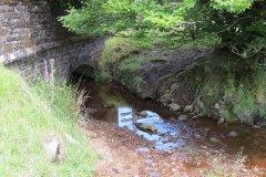 1a. Exe Head Bridge to Warren Bridge
