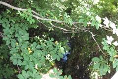 16.-Millbrook-Gardens-Bridge-Looking-Upstream