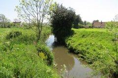 12.-Upstream-from-Dunpole-Farm-Approach-Bridge