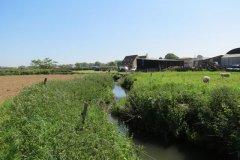 2.-Downstream-from-Sea-Dairy-Farm-Accommodation-bridge
