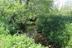 20.-Downstream-from-Dunpole-Farm-Approach-Bridge
