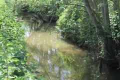 21.-Downstream-from-Dunpole-Farm-Approach-Bridge