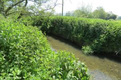 23.-Upstream-from-join-with-River-Isle