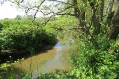 26.-Upstream-from-join-with-River-Isle