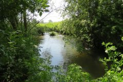 28.-Upstream-from-join-with-River-Isle