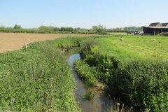 4.-Looking-upstream-from-Sea-Dairy-Farm-Accommodation-bridge
