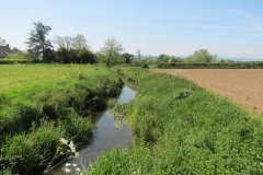 5.-Looking-downstream-from-Sea-Dairy-Farm-Accommodation-bridge