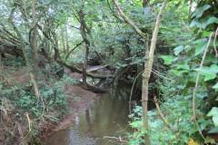 15.-Downstream-from-Haselbury-Old-Bridge-2