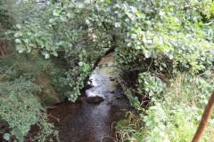15.-Downstream-from-Haselbury-Old-Bridge-3