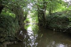 18.-Looking-downstream-from-Haselbury-Old-bridge