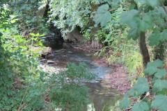 23.-Upstream-from-Haselbury-Old-Bridge-2