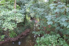 23.-Upstream-from-Haselbury-Old-Bridge-3