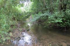25.-Looking-upstream-from-Easthams-Bridge