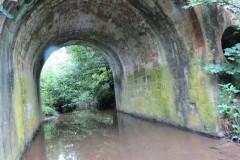 28.-Looking-upstream-through-Easthams-Bridge