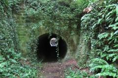 29.-ROW-footpath-beneath-A30-on-River-Parrett-Trail