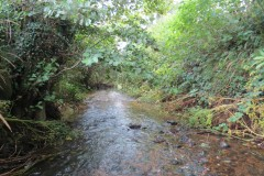 5.-Looking-downstream-from-ROW-Bridge-No.466