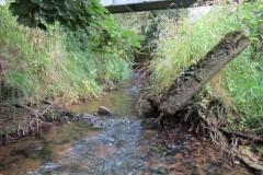 6.-Looking-upstream-from-ROW-Bridge-No.466