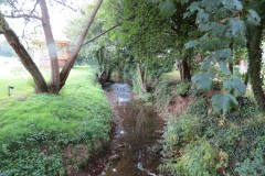 9.-Looking-downstream-from-Haselbury-Mill-Bridge