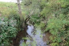 Upstream-from-ROW-Bridge-466-3