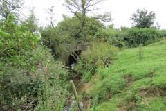 Upstream-from-ROW-Bridge-466-4