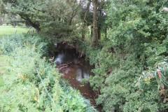 Upstream-from-ROW-Bridge-466-5