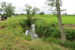 19.-Upstream-from-Chinnock-Brook-Join-1