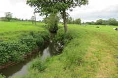 19.-Upstream-from-Chinnock-Brook-Join-2