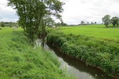 19.-Upstream-from-Chinnock-Brook-Join-3