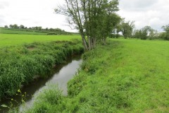 19.-Upstream-from-Chinnock-Brook-Join-4
