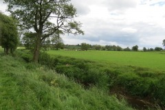 19.-Upstream-from-Chinnock-Brook-Join-5