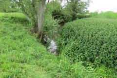 25.-Upstream-from-Byme-Bridge
