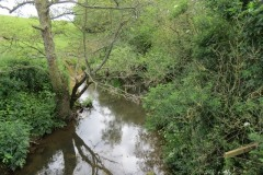 5.-Looking-upstream-from-Bow-Bridge