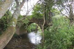 8.-Bow-Bridge-upstream-arch