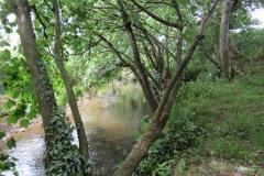 9.-Upstream-from-Bow-Bridge