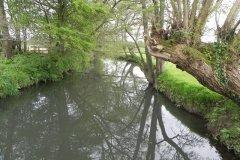 Alhampton Mill