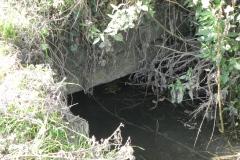 4a.-Dimmer-Lane-Culvert-upstream-Face