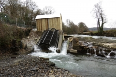 Beasly Weir River Barle February 2016 (10)