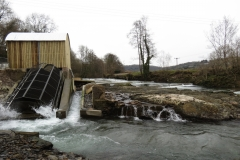 Beasly Weir River Barle February 2016 (11)