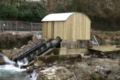 Beasly Weir River Barle February 2016 (2)