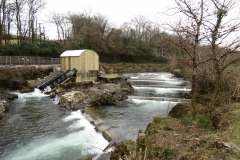 Beasly Weir River Barle February 2016 (3)
