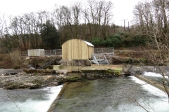 Beasly Weir River Barle February 2016 (4)