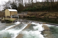 Beasly Weir River Barle February 2016 (5)