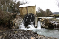Beasly Weir River Barle February 2016 (9)