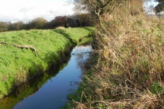 18.-River-View-downstream-from-Cary-Moor-Accomodation-Bridge-D