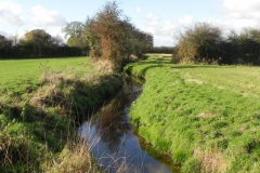 19.-River-View-downstream-from-Cary-Moor-Accomodation-Bridge-D