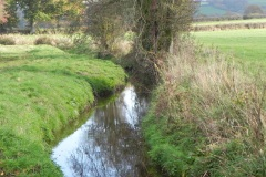 20.-Looking-upstream-from-Cary-Moor-ROW-Bridge-No.252