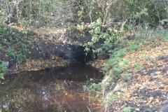 24.-Cary-Moor-ROW-Bridge-No.252-Upstream-Face