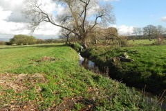26.-Looking-upstream-from-Cary-Moor-ROW-Bridge-No.2770